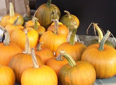 dennis-pumpkins